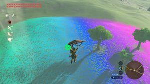 Rainbow-grass-1.jpg